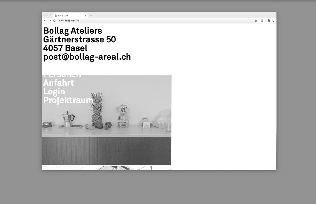 Bollag Website 2